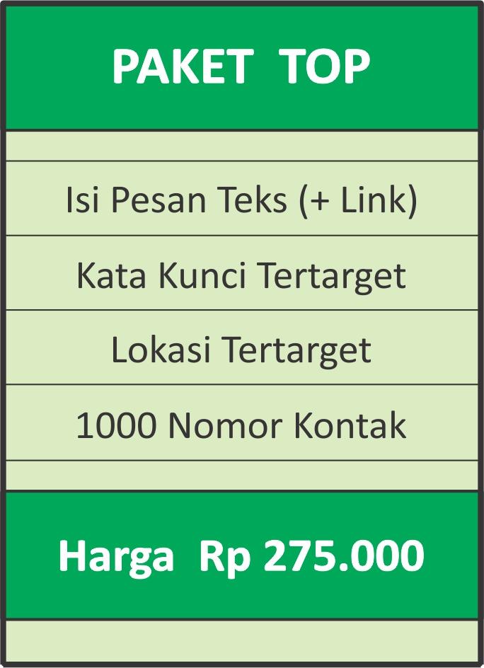 jasa wa marketing